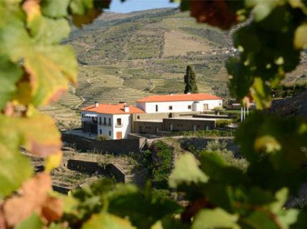 Quinta do Pégo, vingård og hotell. En perle i Duoro dalen.