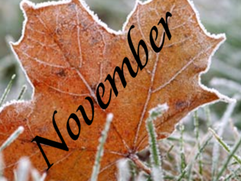Novembernyheter!
