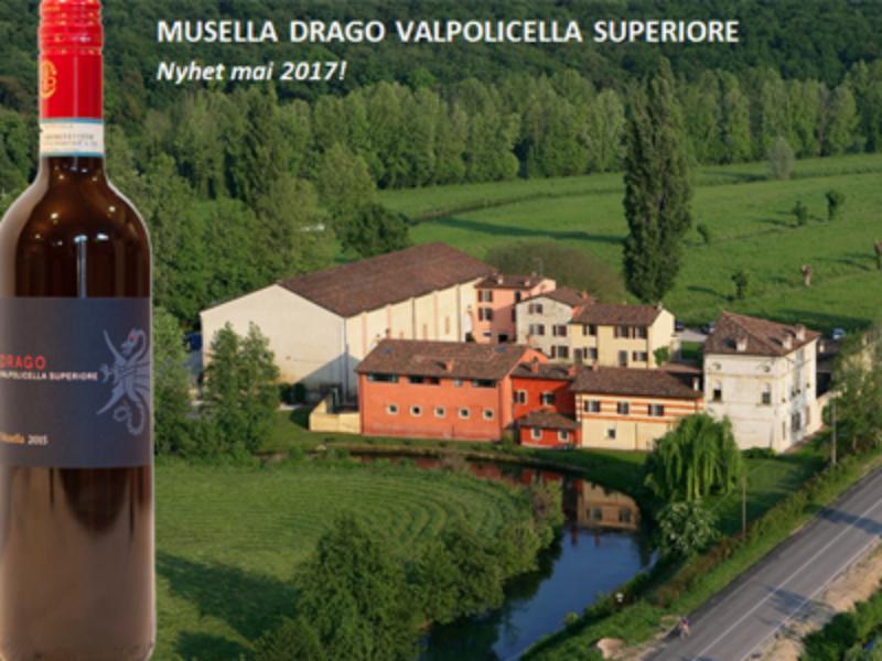 Ny biodynamisk Valpolicella fra Musella – det perfekte følget gjennom sommeren!