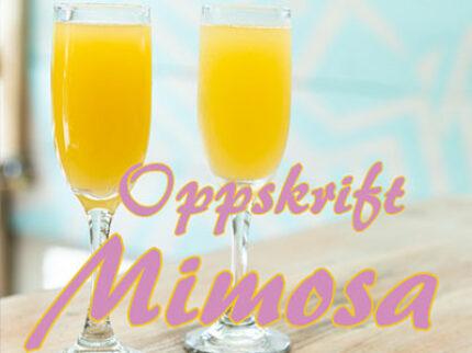 Mimosa – den perfekte sommerdrinken!