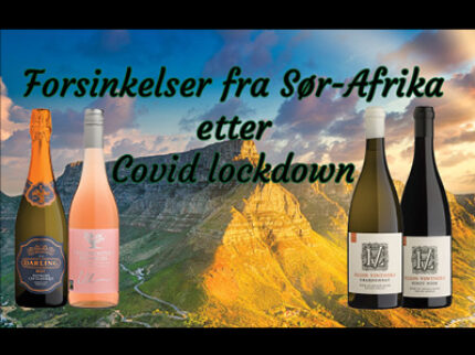 Covid-19 førte til full stopp for Sør-Afrikansk vin